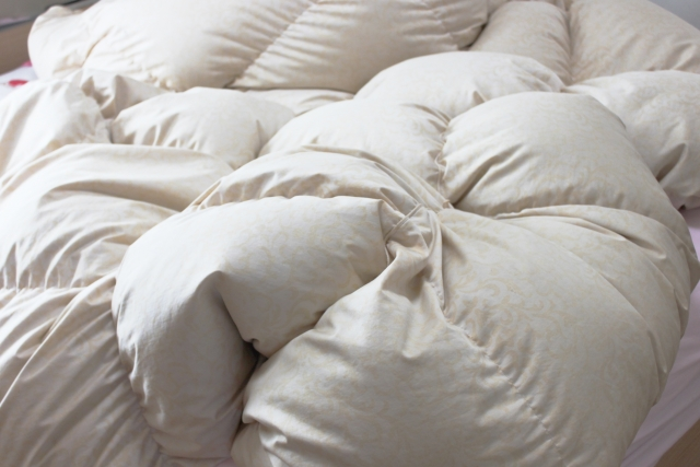 布団のダニを自宅で簡単に駆除する3つの方法まとめ