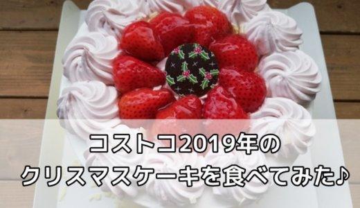 コストコ2019のクリスマスケーキはシフォンケーキだった♪