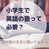 小学生で英語の塾って必要?個別塾の先生に聞いてきた!